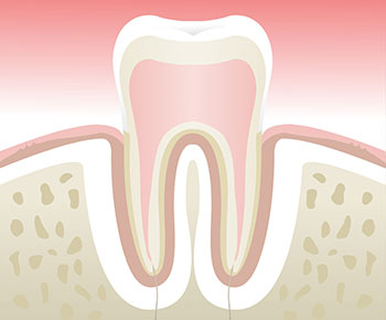 Parodontologie-Stade-1